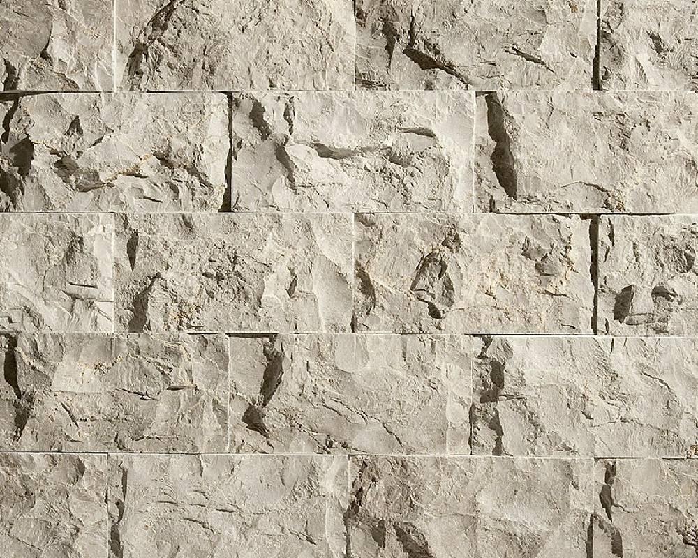 Splitface Fossil